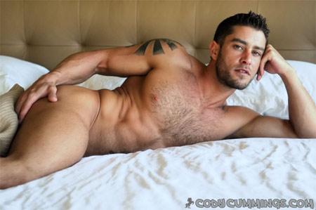 mondo chat porno gay orsi