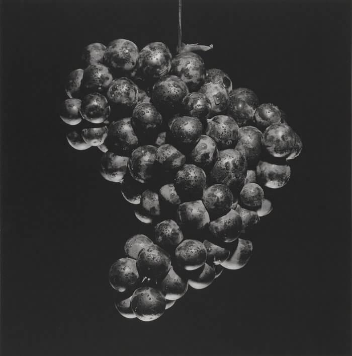 Grapes, 1985