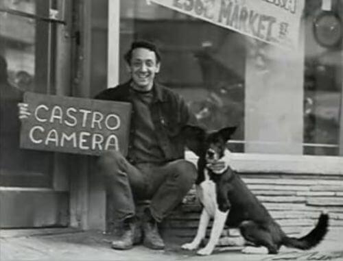 Harvey Milk Castro